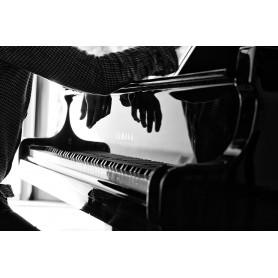Jazz Spirit 38